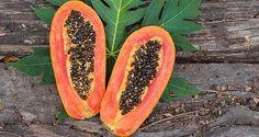 Voici les meilleurs bienfaits santé des graines de papaye. Ces graines sont bénéfiques pour la santé du foie, des reins et de l'intestin.