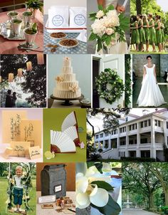 traditional southern charm; Palette: Green & White