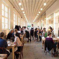 Scheepskameel - Kattenburgerstraat 7, gebouw 24 1018 JA Amsterdam