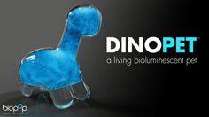Dino Pet // a living bioluminescent pet. Powered by dinoflagellates (bioluminescent plankton),