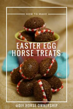 DIY: Easter Egg Horse Treats Recipe – DIY Horse Ownership apaloosa horse, horse manes ideas, first horse Horses And Dogs, Show Horses, Diy Horse, Horse Horse, Horse Tips, Homemade Horse Treats, Horse Cookies, Pet Treats, Bakery Recipes
