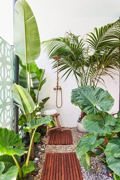 "The Raskinds upgraded the side yard by installing an outdoor shower, something that Rebecca Raskind feels is ""having a moment right now."" They also sourced tropical plants inspired by Bali for a vacation vibe. Shower Plant, Garden Shower, Garden Bathroom, Outdoor Baths, Outdoor Bathrooms, Tropical Landscaping, Tropical Plants, Tropical Outdoor Decor, Tropical Garden Design"