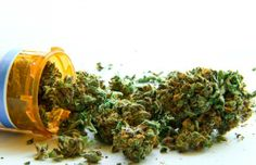 Canadian Doctor Says Medical Marijuana Is Safer than Other Medicines He Prescribes