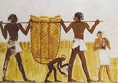 Image result for ancient egypt clothing