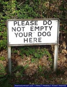 In case your dog gets full. Where should I empty my dog?
