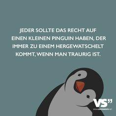 Jeder sollte das Recht auf einen kleinen Pinguin haben, der immer zu einem heugewatschelt kommt, wenn man traurig ist.
