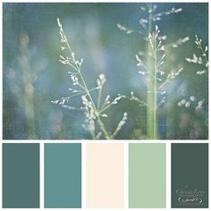 Design Seeds for all who color tuscan hues ❤ liked on Polyvore featuring design seeds, color, color palettes, backgrounds and seeds