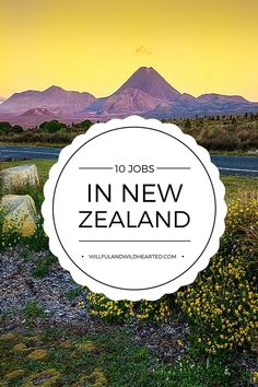 Are you interested in working or living in New Zealand? Click here to see this guide I've created of 10 working holiday visa jobs in New Zealand just for you! Save this pin or share it so others can have this awesome resource, too!