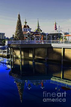 Disney Christmas Reflections Photograph  - Disney Christmas Reflections Fine Art Print