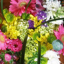 Premium wedding flowers from the finest US growers Wholesale