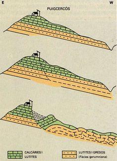 Esquema de l'esllavissada on s'observa el component rotacional de la capçalera i el component fluidal de la base (Història Natural dels Països Catalans) #esllavissada #uigcercos #geologia #pallarsjussa #concadetremp #tremp.