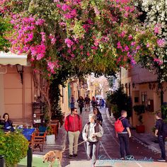 PLAKA.....cafe melina's .....ATHENS.....GREECE.....