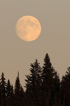 A full moon wow what beauty!