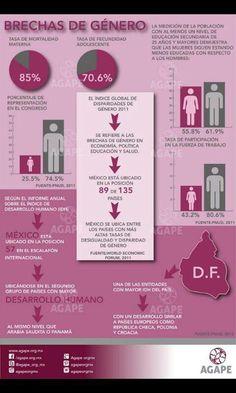 Brechas de género en el Distrito Federal.