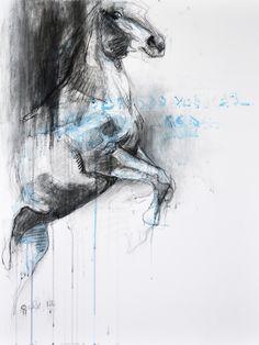 """Saatchi Online Artist: Benedicte Gele; Chalk, 2013, Drawing """"Equine Nude 1T"""""""