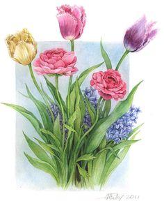 Hundreds of images and backgrounds Art Floral, Shabby Flowers, Lavender Flowers, Paper Flowers, Watercolor Disney, Watercolor Flowers, Watercolor Paintings, Botanical Illustration, Botanical Prints