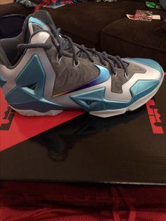 Nike Basketball shoes Lebron 11s