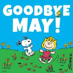 Where did you go May???