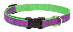 LupinePet Club 34 Hampton Purple 1322 Adjustable Collar for Medium and Larger Dogs * You can get more details by clicking on the image.Note:It is affiliate link to Amazon.