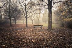 Autumn Fantasy : Mystery Bench   Flickr: partage de photos!