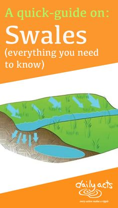 Capture the precious resource of rain with this technique! A swale is a ditch that is dug on contour, meaning that it runs perfectly level across the landscape. Swales are a great way to slow, spread and sink excess rainwater that would normally runoff. Garden Sink, Rain Garden, Water From Air, Permaculture Design, Landscaping Work, Water Management, Free Plants, Rainwater Harvesting, Shade Trees