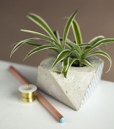 DIY | CONCRETE PLANTER (whimseybox) | DIY 2:http://hub.tutsplus.com/tutorials/how-to-make-a-geo-faceted-cement-planter--craft-11145