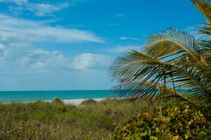 Tropical Paradise. Sanibel.  www.SunnySanibel.com