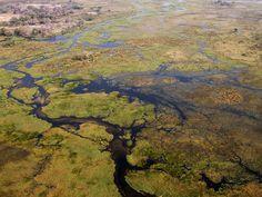 8 ways to experience Botswana's magnificent Okavango Delta | Botswana Travel Guide