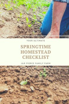 Here's a checklist of everything you need to get done this spring. Here's a checklist of everything you need to get done this spring. Gardening Tips, Vegetable Gardening, Container Gardening, Flower Gardening, Diy Herb Garden, Herbs Garden, Garden Ideas, Solar Equipment, First Aid Tips