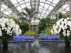 Orchid Extravaganza, Longwood Gardens, Kennett Square, PA USA IMG 1470 Photograph by Dolores Kelley