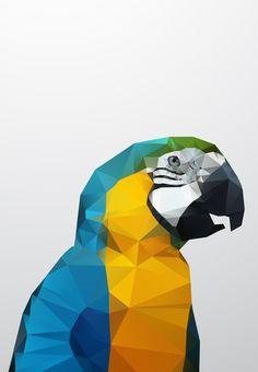 Geo - Parrot Canvas Print