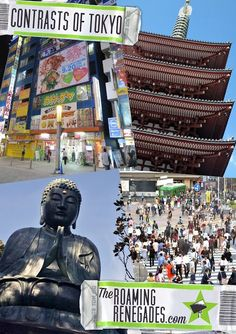 The Contrasts of Tokyo, Japan! http://www.theroamingrenegades.com/2015/11/the-contrasts-of-tokyo-japan.html