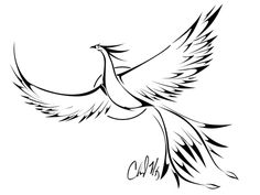 phoenix tattoo idea, possibly for cover up