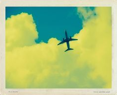 Fly Away Polaroid Transfer Print by Tony Grider, FREE SHIPPING CYBER MONDAY
