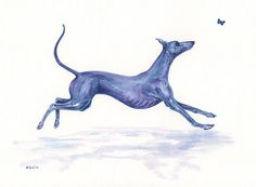 Whippet Greyhound Dog Original Watercolour Painting by Bridgette Lee | eBay Laelaps