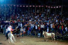 National Fiesta,Toros y baile en Costa Rica