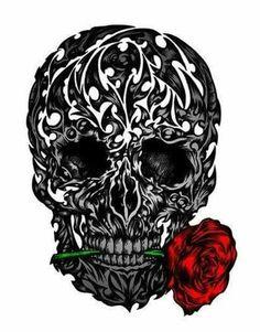 Skulls and Skeletons.