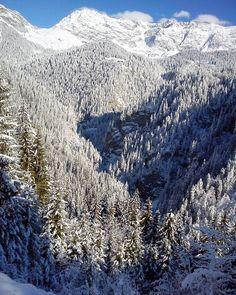 Php, Switzerland, Hiking, Snow, Instagram, Winter, Outdoor, Walks, Winter Time