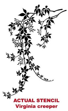Wall stencil of wild med. - Reusable stencils better than decals Wall stencil Virginia Creeper MED. by CuttingEdgeStencils Stencil Patterns, Stencil Designs, Embroidery Patterns, Large Wall Stencil, Stencil Wall Art, Stencil Decor, Bird Stencil, Virginia Creeper, Cutting Edge Stencils
