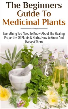 The Beginners Guide to Medicinal Plants: Everything You Need to Know About the Healing Properties of Plants & Herbs, How to Grow and Harvest Them (Medicinal ... Wild Plants, Healing Properties, Medicinal):Amazon:Kindle Store