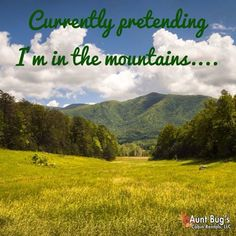 Currently pretending I'm in the Smoky Mountains...
