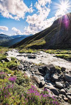 Downstream Green Nature, Mountains, Travel, Beautiful, Viajes, Destinations, Traveling, Trips, Bergen