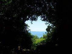 http://www.tabi-go.jp/13120/ hannibalさんの投稿作品:沖縄県「南城市」にある世界遺産「斎場御嶽」は、まさに聖域でした!