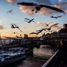 Wir wünschen euch einen guten Flug ins Wochenende! #Weekend #TGIF #Hamburg