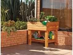 Catral Garden, specialist in garden, cultivation and decoration Outdoor Furniture Sets, Outdoor Decor, Plantar, Outdoor Storage, Exterior, Home Decor, Gardens, Organic Farming, Flowering Plants