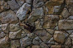 https://flic.kr/p/zDuibw | Stone wall...
