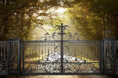 bespoke-wrought-iron-gates-Venus | Flickr - Photo Sharing!