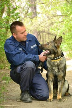 You can see the love between this pair. Military Working Dogs, Military Dogs, Police Dogs, K9 Officer, Dog Enrichment, German Shepherd Dogs, German Shepherds, Work With Animals, War Dogs