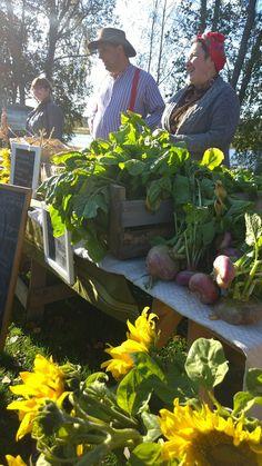 Markkinoilla on myynnissä muun muassa syksyn satoa, käsitöitä ja leivonnaisia. Kauniit auringonkukat piristävät väriloistossaan syksyistä päivää. Oulu (Finland)
