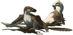 """Two different interpretations of the same dinosaur. Also featuring a slightly mangled small pterosaur. B is for Balaur Balaur bondoc (a very fun name to say out loud, meaning """"stocky dragon"""") was an unusual little dromaeosaur from the Late Cretaceous of Romania, living about 70 million years ago. At about 2m (6'6"""") long, it was roughly the same size as the closely-related Velociraptor. It was more heavy-set and muscular than other """"raptors"""", and only had two functional fingers on each hand…"""
